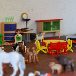 Playmobil-web.jpg